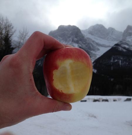 mountain apple