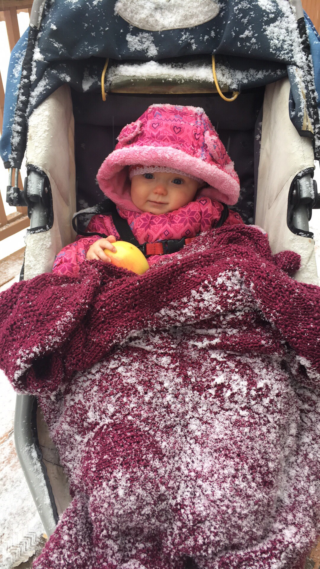 snowy apple snacks