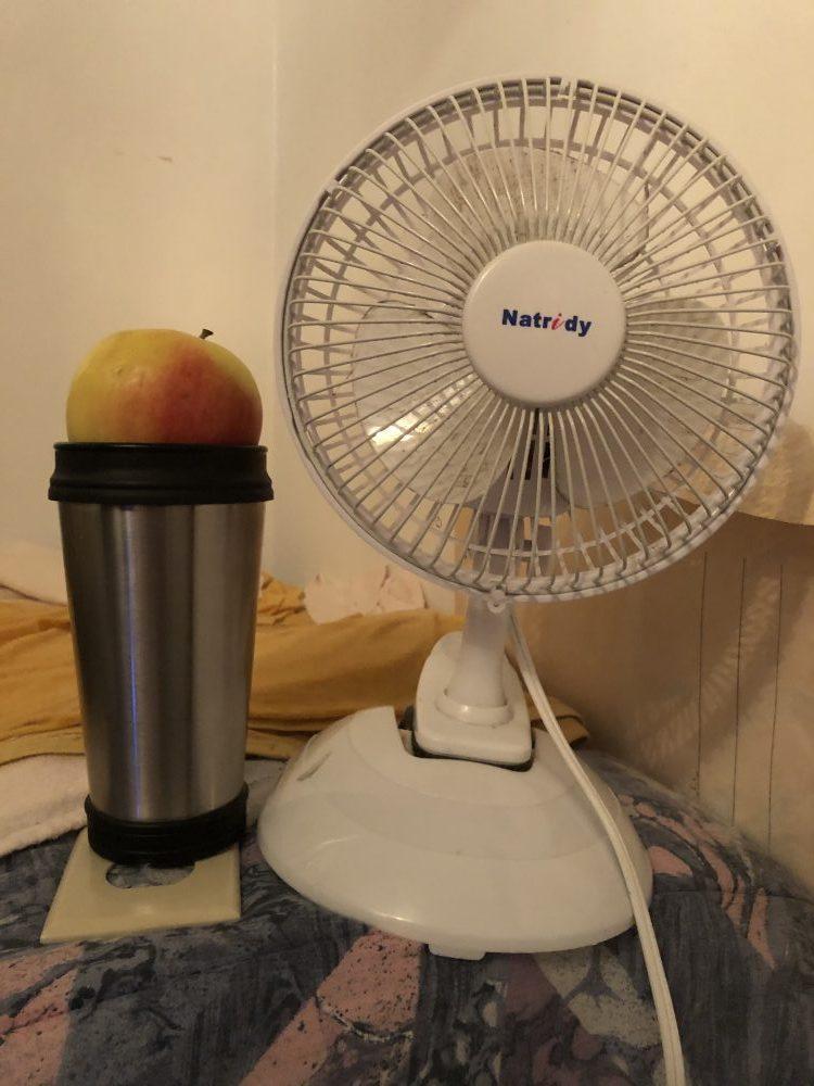 a fan of ambrosia apples