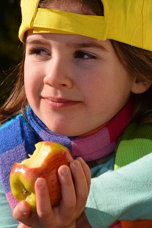 Ambrosia apples contest winner
