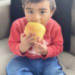 my favourite ambrosia apple